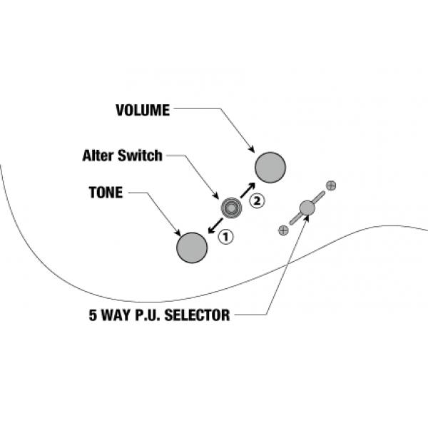Κιθαρες - ηλεκτρικες κιθαρες ibanez az2202a-tfb