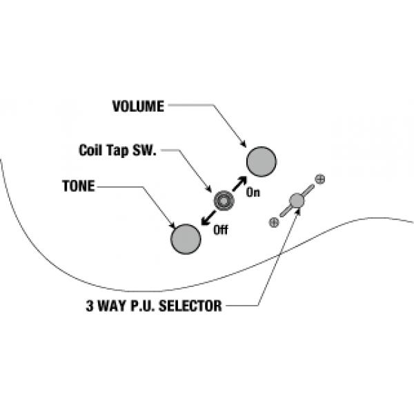 Κιθαρες - ηλεκτρικες κιθαρες ibanez rg421hpfm-brg