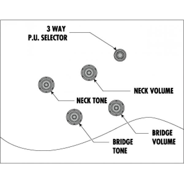 Κιθαρες - ηλεκτρικες κιθαρες hollow bodies ibanez as93fm-vls