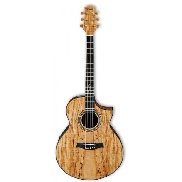 Acoustic Electric Guitars ibanez ew50sme-nt