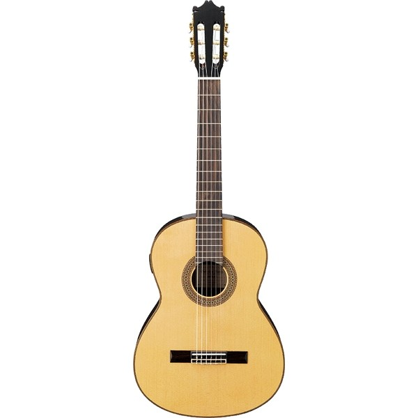 Classical Guitars ibanez g200e-nt