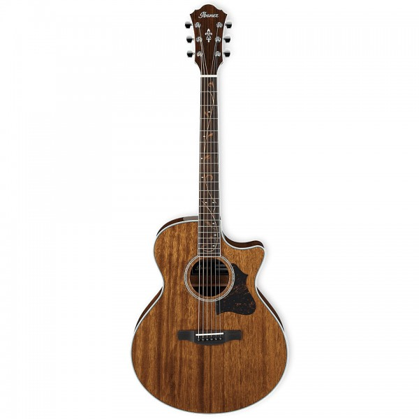 acoustic electric guitars ibanez ae245-nt